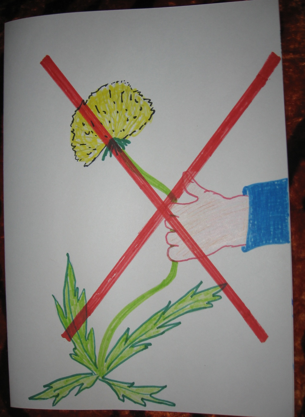 Картинки дети защищают природу