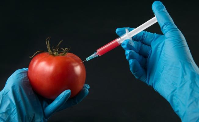 Презентация на тему:  содержание нитратов в продуктах питания авторы: обучающиеся 9 класса авторы