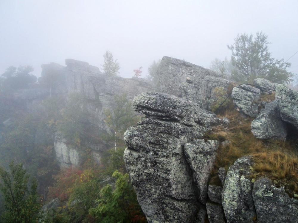 Полюд в тумане