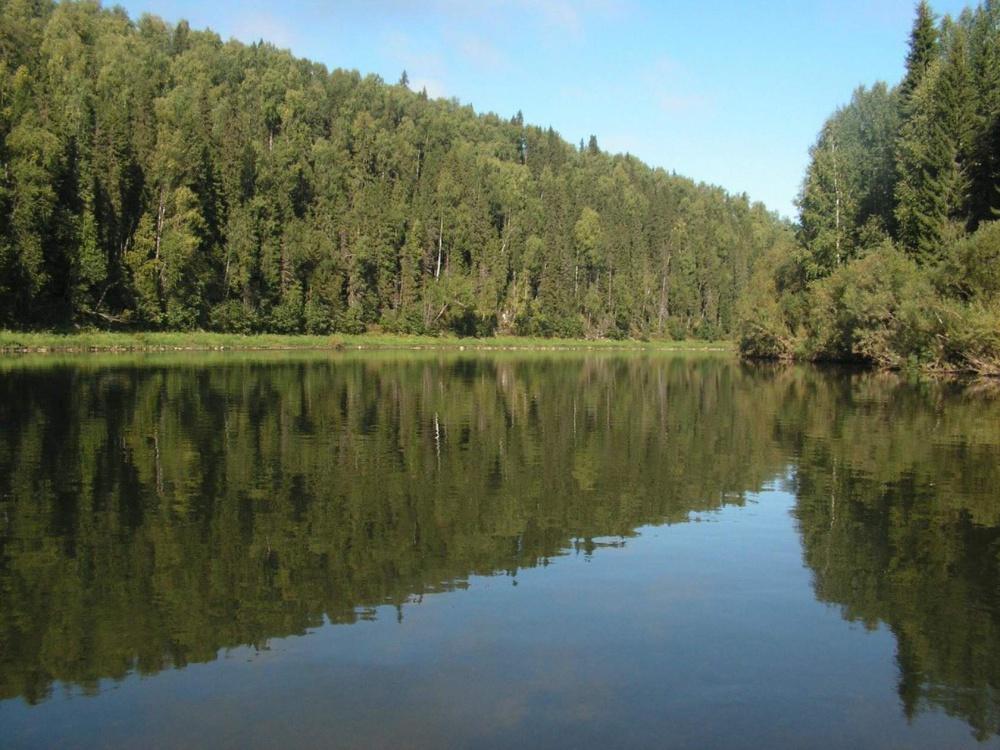 река Березовая