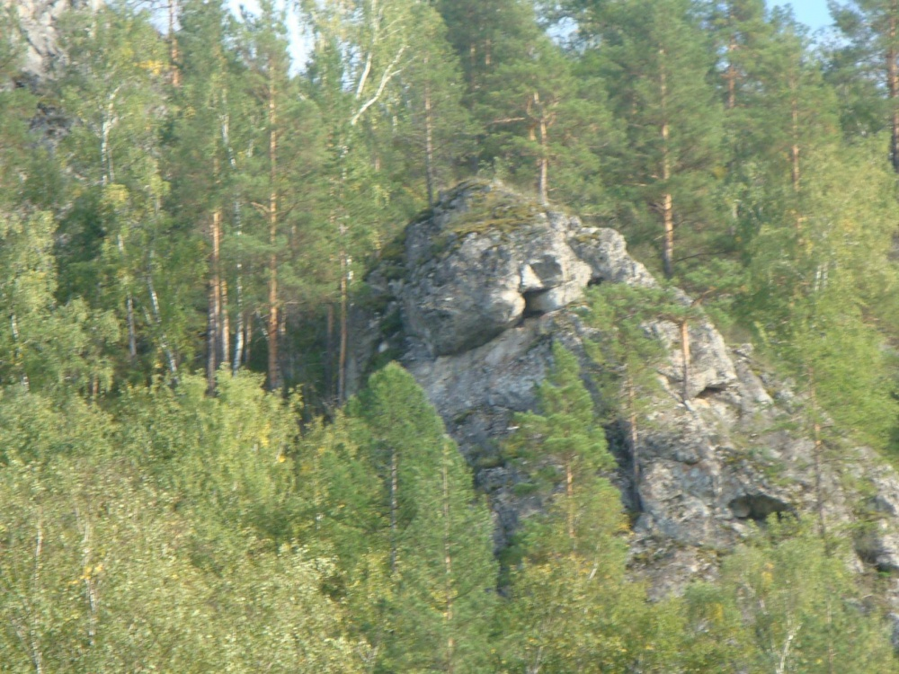 лес Мурадыморского ущелья