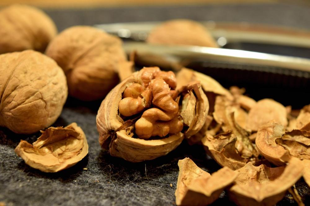 свежие орехи полезны