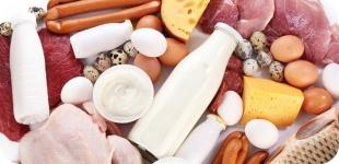 Чем можно заменить животный белок?