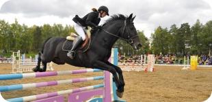 Езда верхом: вся польза конного спорта