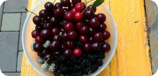 Шелковица - одновременно вкусный и полезный десерт!